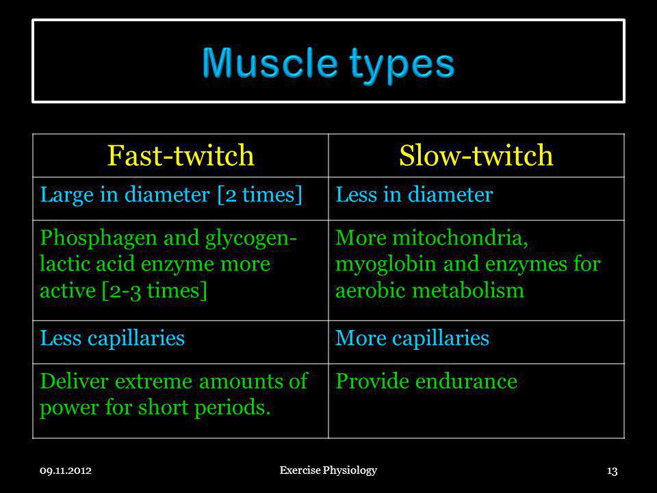 Muscle types Fast-twitch Slow-twitch Large in diameter [2 times]